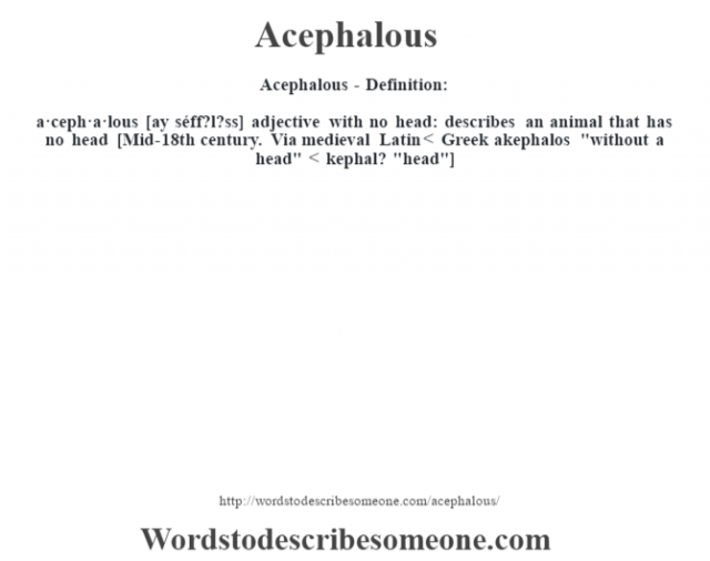 Acephalous- Definition:a·ceph·a·lous [ay séff?l?ss] adjective   with no head: describes an animal that has no head    [Mid-18th century. Via medieval Latin < Greek akephalos