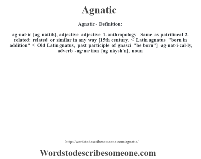 Agnatic definition | Agnatic meaning - words to describe ...