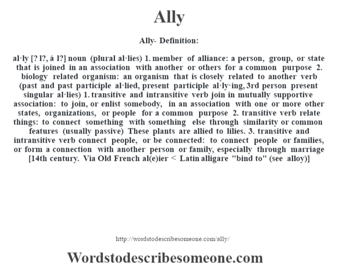 Ally definition | Ally meaning - words to describe someone