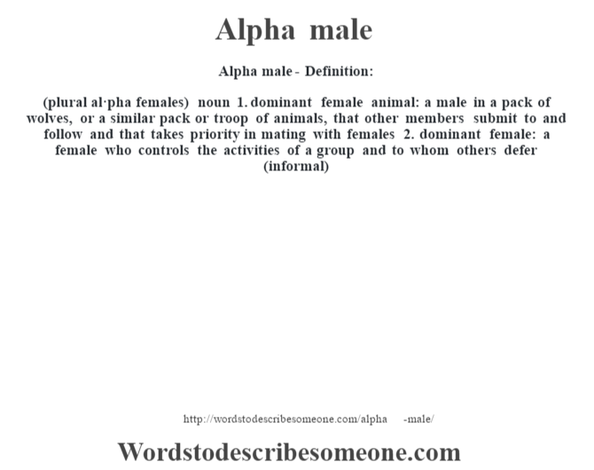 What does the term alpha male mean