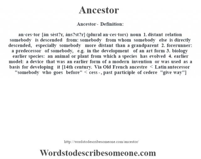 Ancestor- Definition:an·ces·tor [án sèst?r, áns?st?r] (plural an·ces·tors)  noun  1.  distant relation somebody is descended from: somebody from whom somebody else is directly descended, especially somebody more distant than a grandparent  2.  forerunner: a predecessor of somebody, e.g. in the development of an art form  3.  biology earlier species: an animal or plant from which a species has evolved  4.  earlier model: a device that was an earlier form of a modern invention or was used as a basis for developing it    [14th century. Via Old French ancestre < Latin antecessor