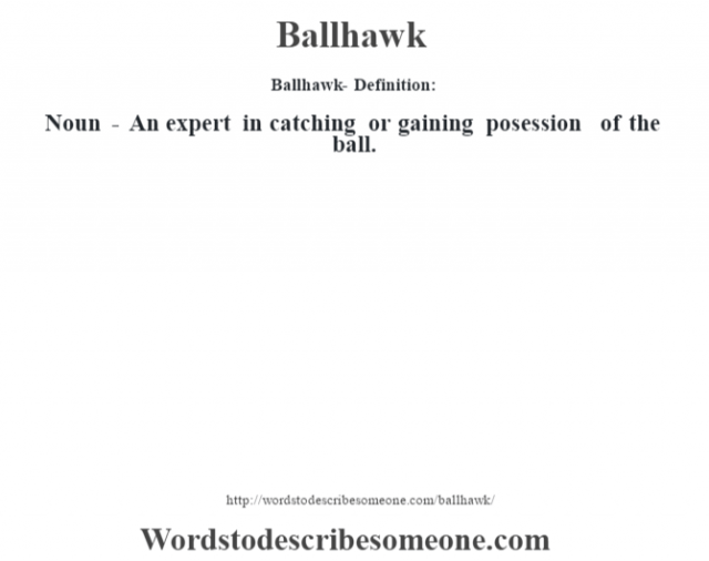 Ballhawk- Definition:Noun - An expert in catching or gaining posession of the ball.