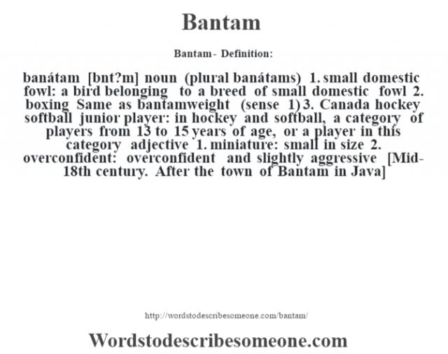 Bantam- Definition:banátam [b‡nt?m] noun (plural banátams)  1.  small domestic fowl: a bird belonging to a breed of small domestic fowl  2.  boxing Same as bantamweight (sense 1)   3.  Canada hockey softball junior player: in hockey and softball, a category of players from 13 to 15 years of age, or a player in this category    adjective  1.  miniature: small in size  2.  overconfident: overconfident and slightly aggressive    [Mid-18th century. After the town of Bantam in Java]