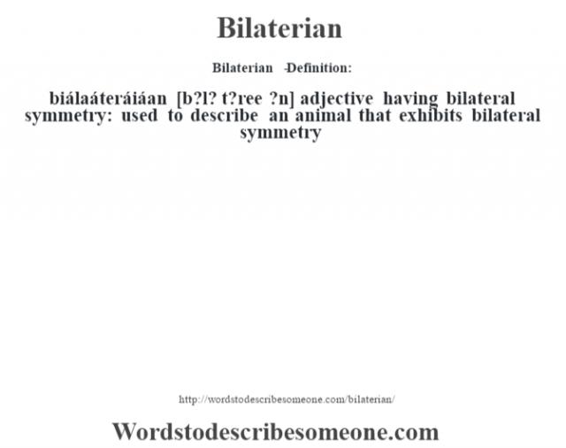Bilaterian   - Definition:biálaáteráiáan [b?l? t?ree ?n] adjective   having bilateral symmetry: used to describe an animal that exhibits bilateral symmetry