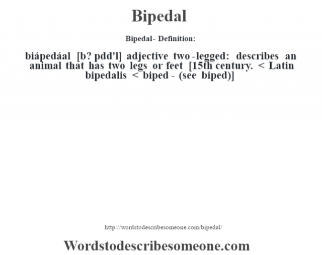 Bipedal- Definition:biápedáal [b? pŽdd'l] adjective   two-legged: describes an animal that has two legs or feet    [15th century. < Latin bipedalis < biped- (see biped)]