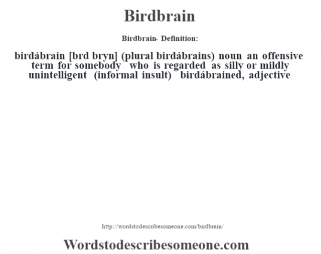 Birdbrain- Definition:birdábrain [bœrd brˆyn] (plural birdábrains)  noun   an offensive term for somebody who is regarded as silly or mildly unintelligent (informal insult)     -birdábrained, adjective