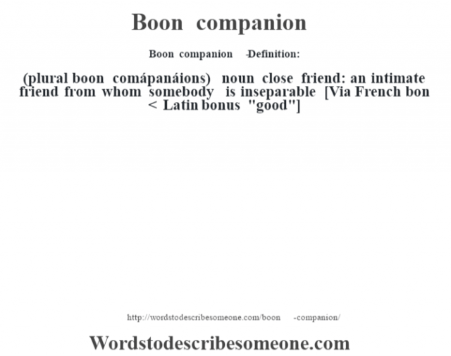 Boon companion   - Definition:(plural boon comápanáions)  noun   close friend: an intimate friend from whom somebody is inseparable    [Via French bon < Latin bonus