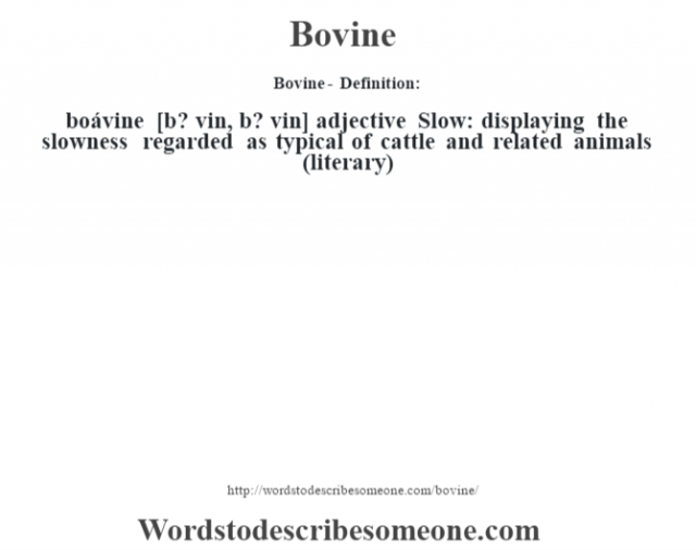Bovine- Definition:boávine [b? vin, b? vin] adjective  Slow: displaying the slowness regarded as typical of cattle and related animals (literary)
