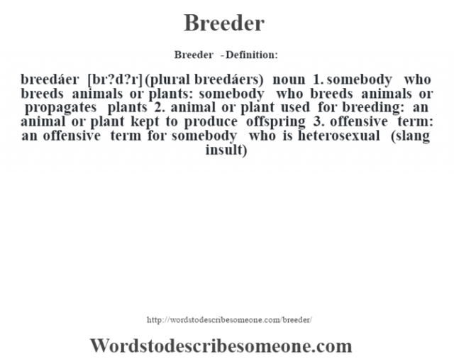 Breeder  - Definition:breedáer [br?d?r] (plural breedáers)  noun  1.  somebody who breeds animals or plants: somebody who breeds animals or propagates plants  2.  animal or plant used for breeding: an animal or plant kept to produce offspring  3.  offensive term: an offensive term for somebody who is heterosexual (slang insult)