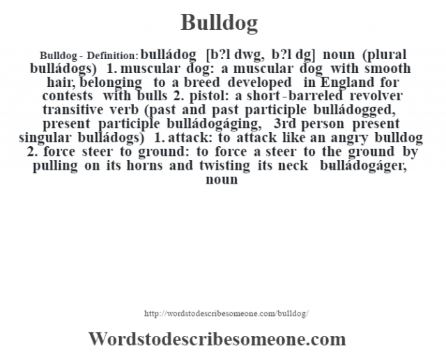 Bulldog- Definition:bulládog [b?l dˆwg, b?l d˜g] noun (plural bulládogs)  1.  muscular dog: a muscular dog with smooth hair, belonging to a breed developed in England for contests with bulls  2.  pistol: a short-barreled revolver    transitive verb (past and past participle bulládogged, present participle bulládogáging, 3rd person present singular bulládogs)  1.  attack: to attack like an angry bulldog  2.  force steer to ground: to force a steer to the ground by pulling on its horns and twisting its neck     -bulládogáger, noun