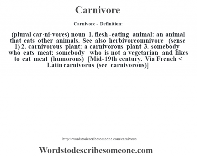 Carnivore - Definition:(plural car·ni·vores)  noun  1.  flesh-eating animal: an animal that eats other animals. See also herbivoreomnivore (sense 1)   2.  carnivorous plant: a carnivorous plant  3.  somebody who eats meat: somebody who is not a vegetarian and likes to eat meat (humorous)    [Mid-19th century. Via French < Latin carnivorus (see carnivorous)]