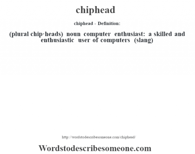 chiphead- Definition:(plural chip·heads)  noun   computer enthusiast: a skilled and enthusiastic user of computers (slang)